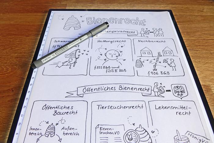 Konturen der Sketchnote zum Bienenrecht auf einem Leuchttisch