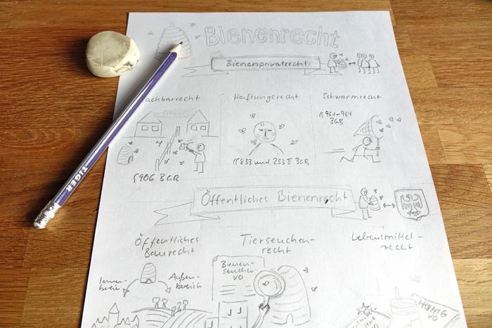 Erster Entwurf der Sketchnote zum Bienenrecht