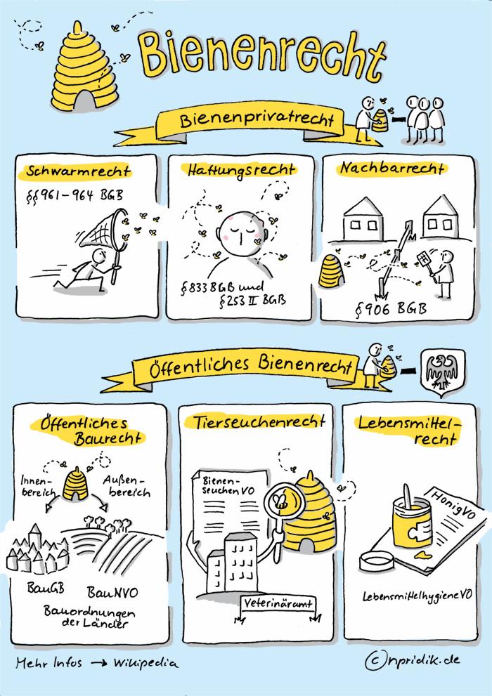 Sketchnote zum Bienenrecht