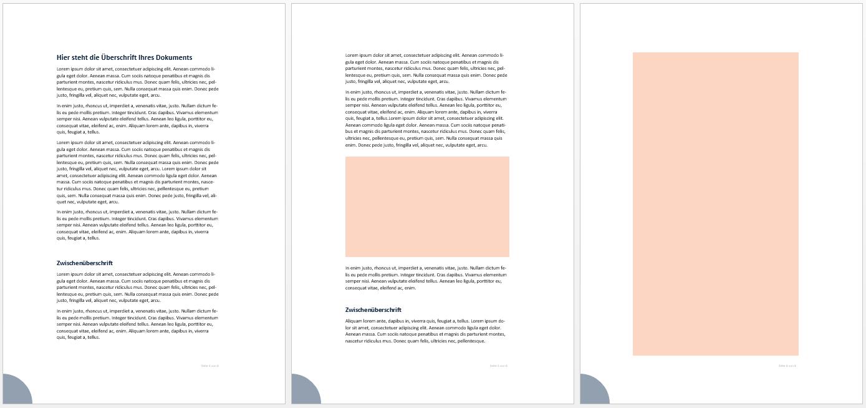 Beispielseiten Text mit Platzhaltern für Schaubilder