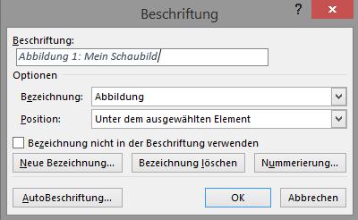 Screenshot Word Dialogfeld Beschriftung
